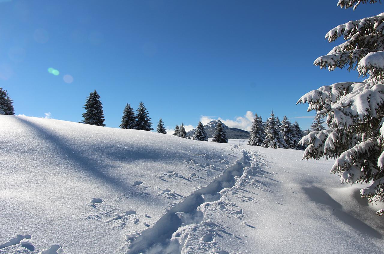 Magisch wit in de Franse Alpen