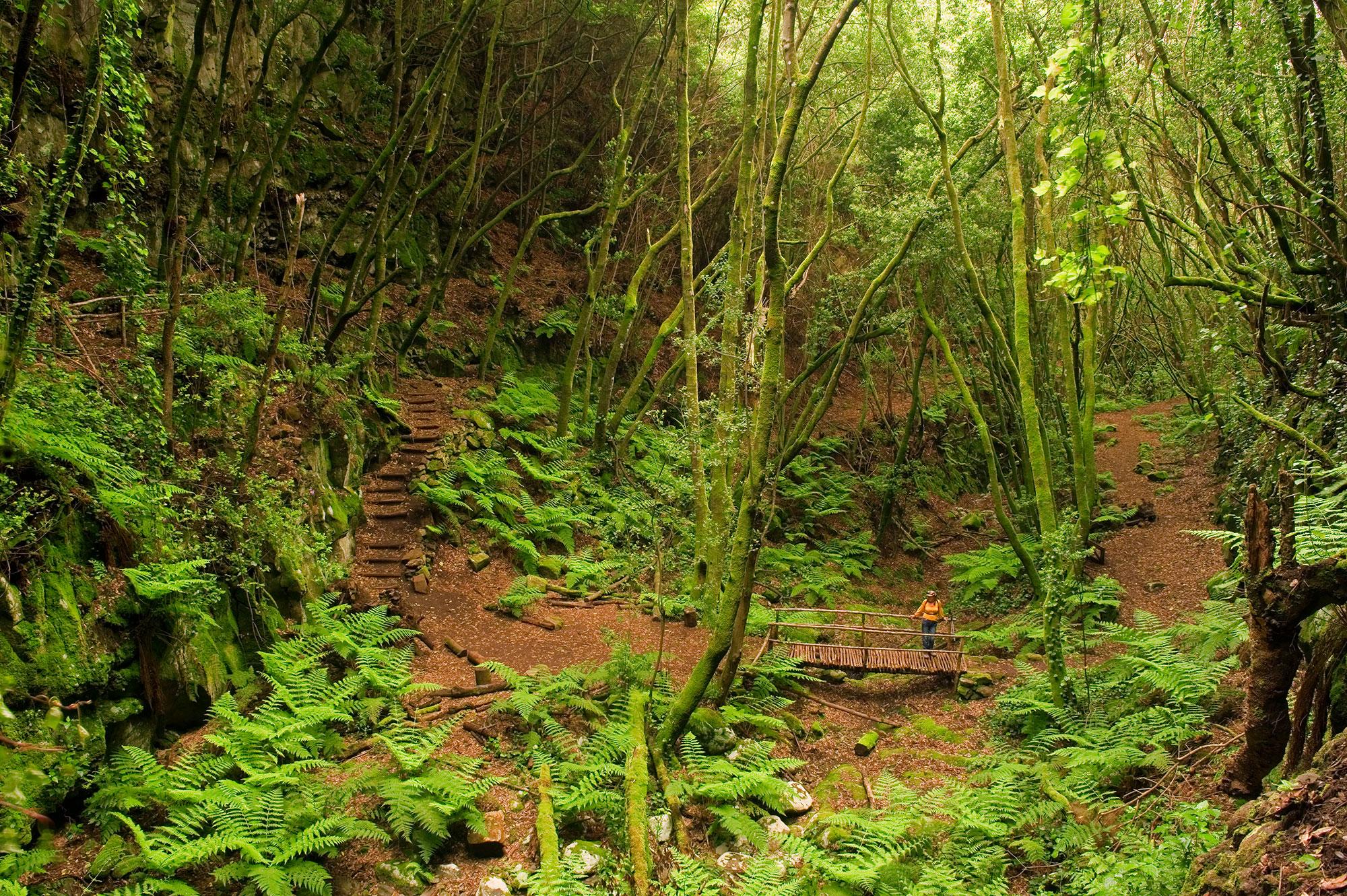 La Palma: een wandelparadijs met 4 seizoenen